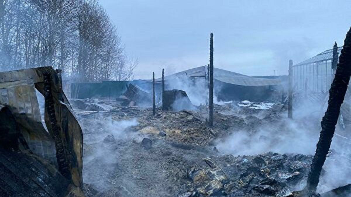 8 killed in Moscow greenhouse fire believed to be Vietnamese: ministry