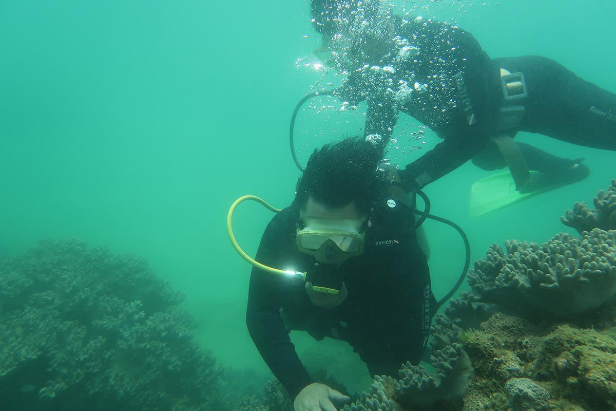 People go scuba diving off Cu Lao Cham islands in central Vietnam. Photo: B.D. / Tuoi Tre