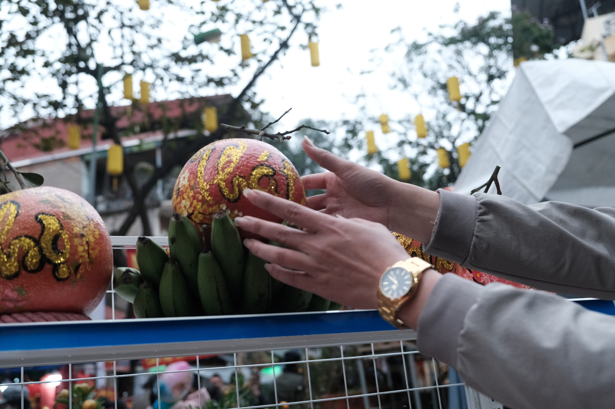Calligraphic grapefruits are sold at the Hang Luoc flower market in Hoan Kiem District, Hanoi. Photo: Mai Thuong / Tuoi Tre