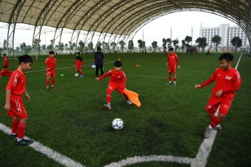 Qualifying for the 2022 World Cup may be a stretch for Vietnam. Photo: AFP