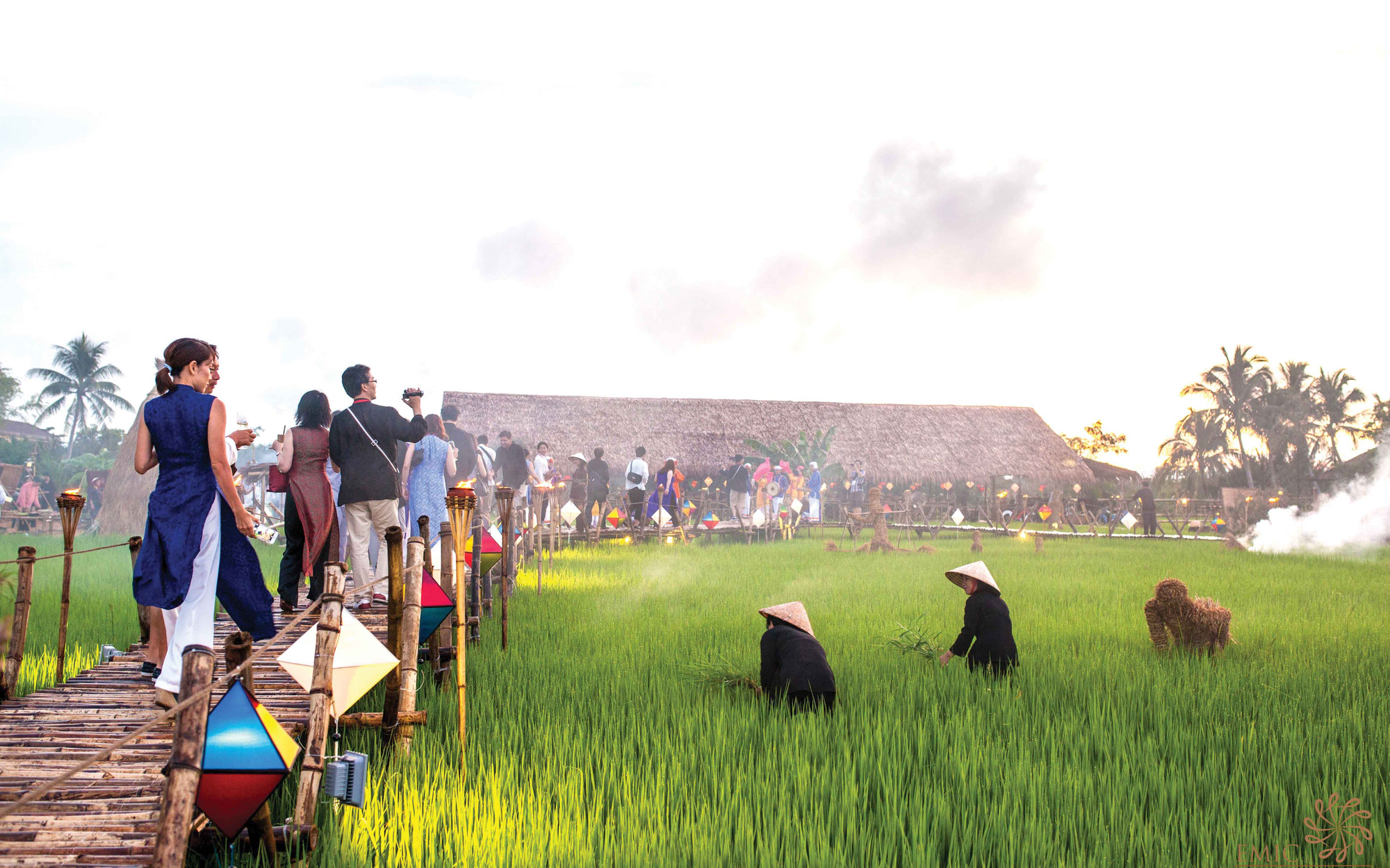 Enjoy a meal in Hoi An's famous paddies