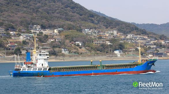 Five Vietnamese missing as cargo vessel sinks off Japan