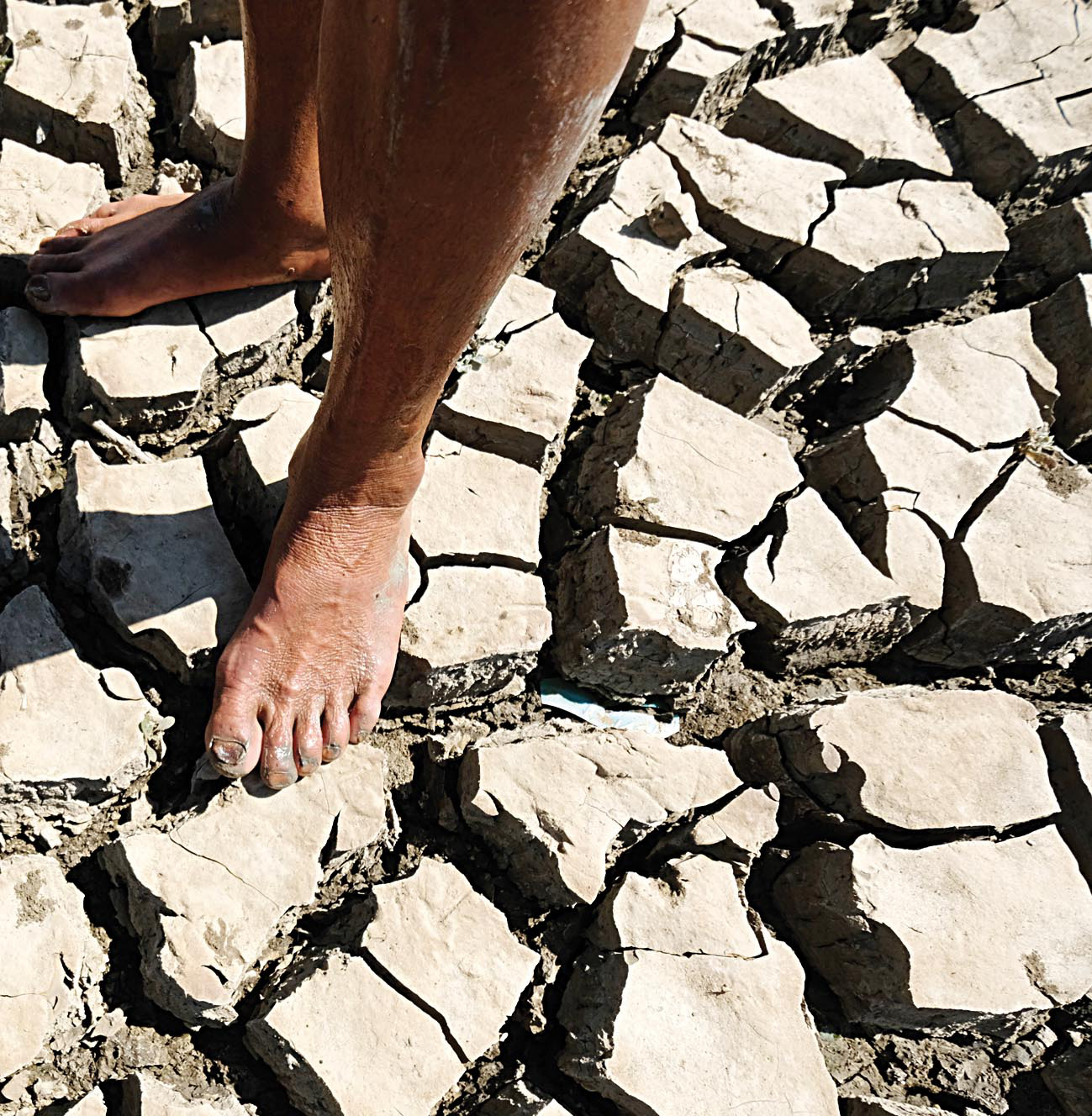 A resident walks on barren soil in drought-stricken Ninh Thuan Province, Vietnam. Photo: Mai Vinh / Tuoi Tre