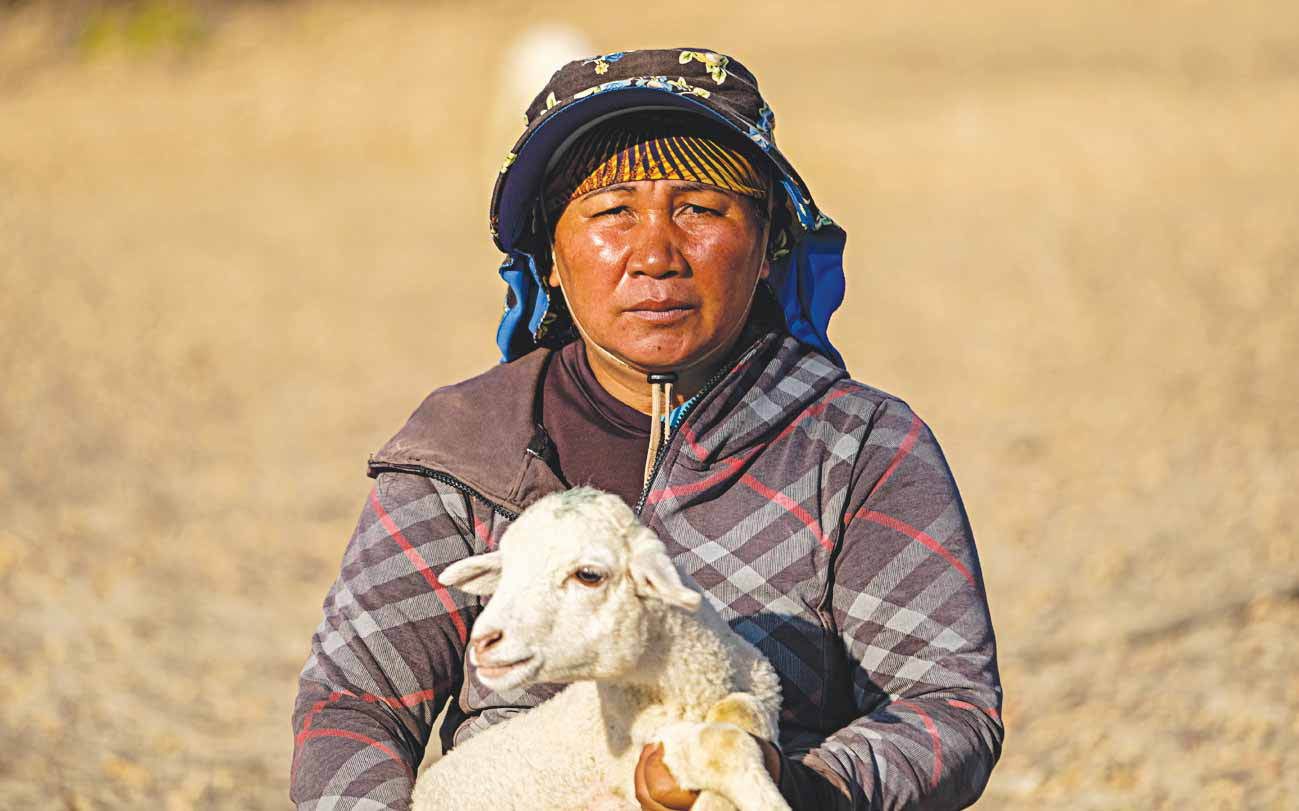 A woman carries a lamb in her arms on barren land in Ninh Thuan Province, Vietnam. Photo: Mai Vinh / Tuoi Tre
