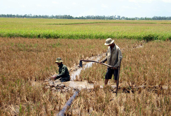 Mekong Delta provinces get $170,000 for saline intrusion control