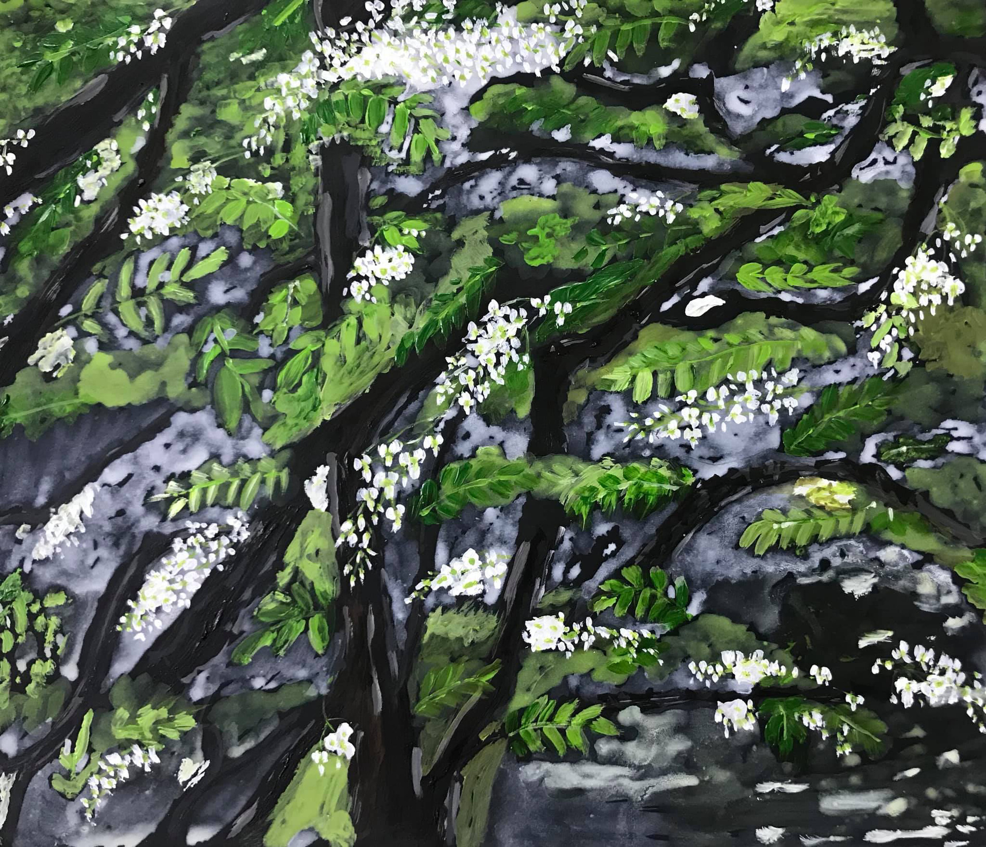 Blackboard tree blossoms are seen in this sketch by Sao Nguyen.