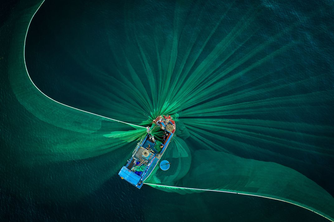 The photo 'Blooming' by Thien Nguyen is included in the Travel category's finalist list of the 17th annual Smithsonian magazine photo contest. In the photo, a fishing net moving underneath the water's surface. Many local fisherman families along the coastline of Phu Yen province in Vietnam will follow the near-shore currents to catch the anchovy during peak season. Only a small proportion of the entire catch is sold fresh, with most of it being dried or salted. Salted anchovy is the most important raw material to create traditional fish sauce; the humble anchovy becomes the spirit of Vietnamese cuisine.