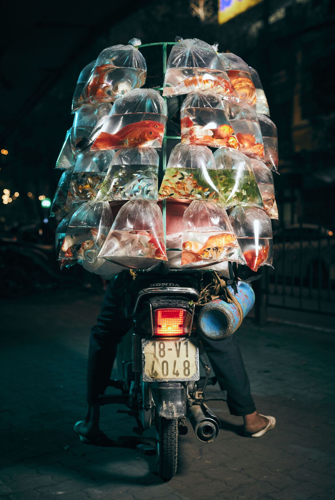 The photo 'A fish seller displays his goods' by British photographer Jon Enoch wins the grand prize of the 17th annual Smithsonian magazine photo contest.