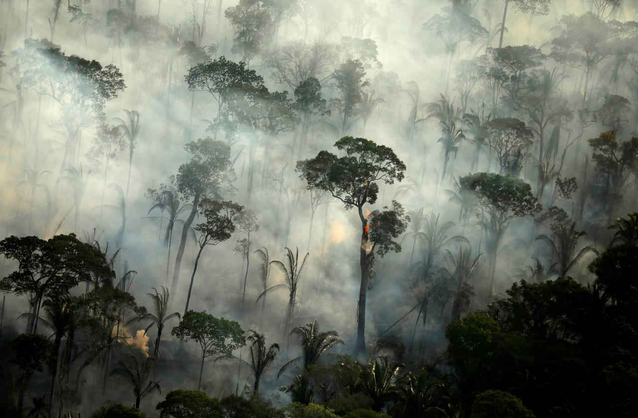 Brazil launches military operations to protect Amazon rainforest