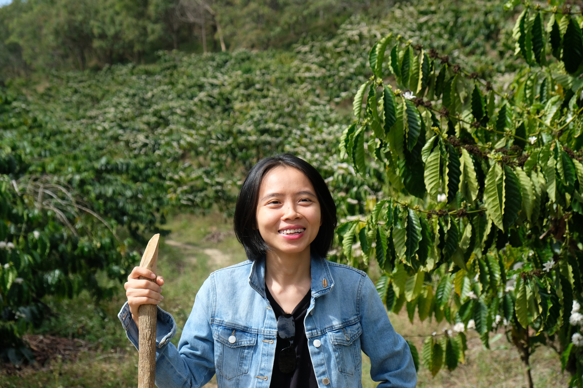 Vietnamese woman pioneers remarkable forest protectioncampaign