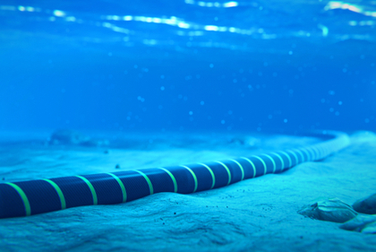 Vietnam's Internet speed disrupted as second submarine cable breaks down