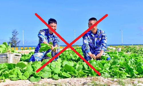 Vietnam opposes China's vegetable cultivation in Hoang Sa