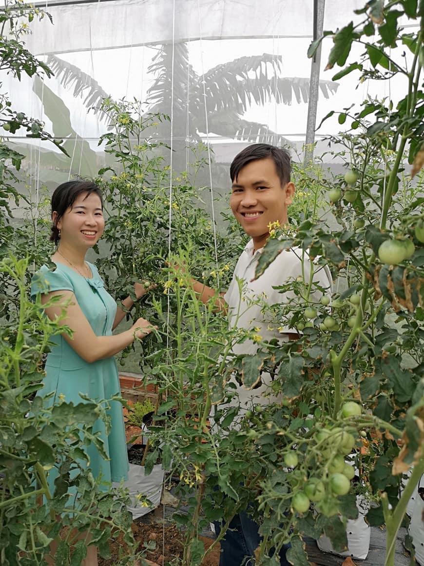Vietnamese food tech engineer hopes to expand net house farming across Mekong Delta