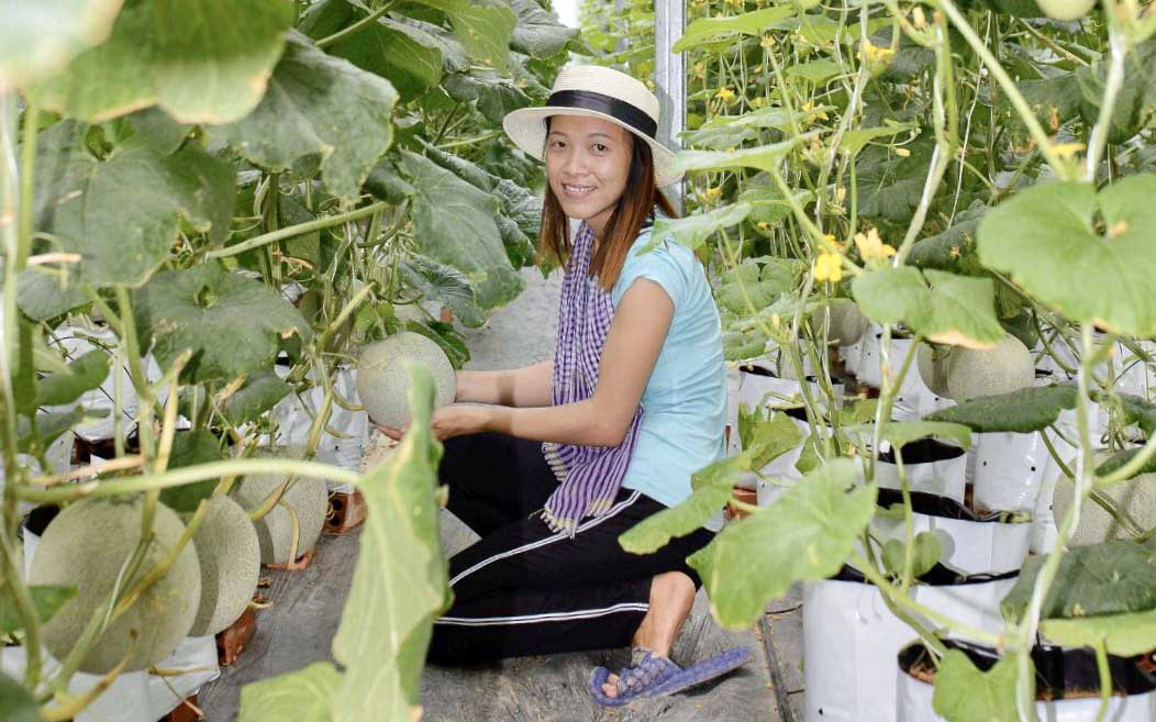 Vietnamese engineer puts love for hi-tech agriculture to test in Mekong Delta hometown