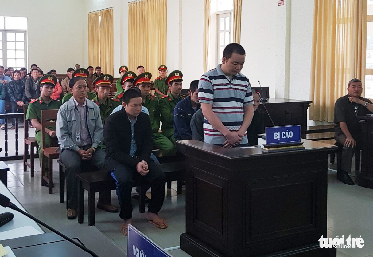 Seven jailed for over 32 years in total for poisoning pine trees in Vietnam
