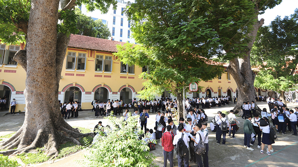 Sticker shock: Saigon school boards caught off guard by whopping tree upkeep bills