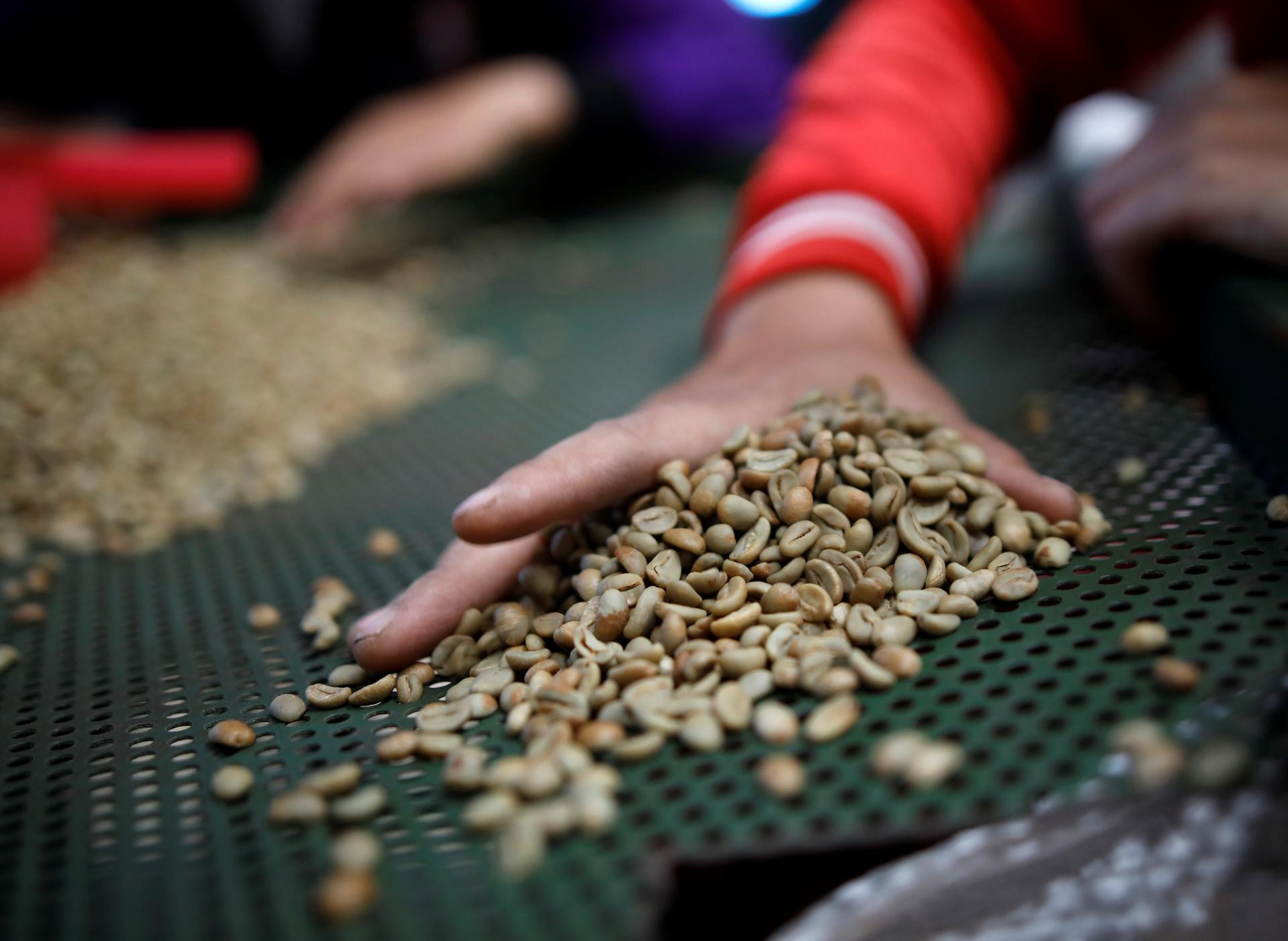 Asia Coffee-Vietnam stocks low; trade picks up in Indonesia