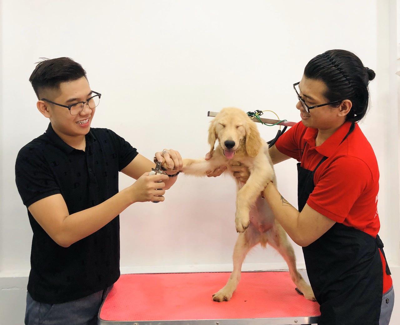 Vietnamese man delivers door-to-door spa service for pet owners