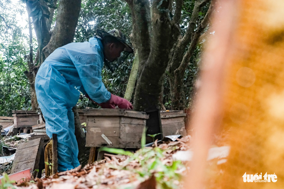 Buzzes from a honey collecting day in northern Vietnam