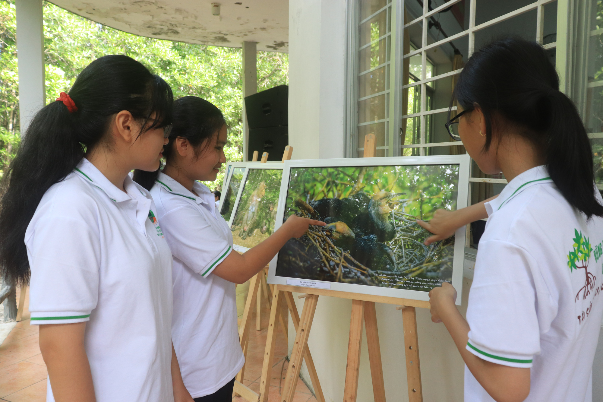 Participants view photos of the Can Gio Mangrove Forest in Can Gio District, Ho Chi Minh City at the prize-giving ceremony of a local photo contest, July 26, 2020. Photo: Thanh Chieu / Tuoi Tre