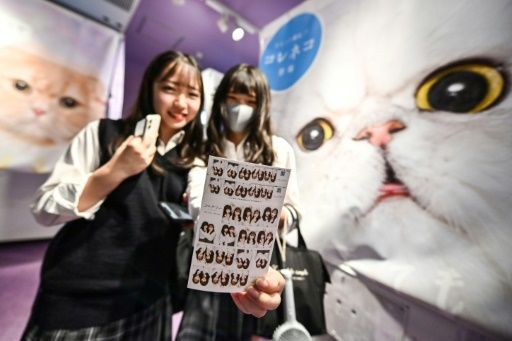 Teenagers in Tokyo pose at a Japanese photo booth known as a 'purikura'. Photo: AFP