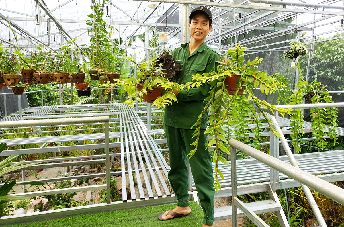 Self-made Vietnamese youth scores big with orchid nursery