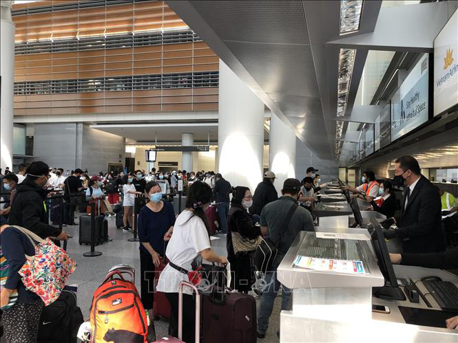 340 Vietnamese citizens arrive home from US