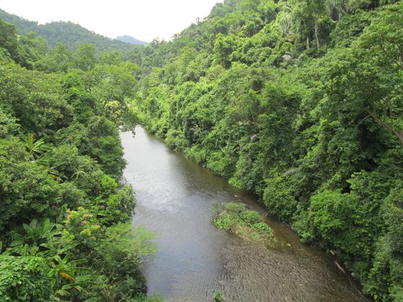 Vietnam establishes nature reserve in Quang Binh