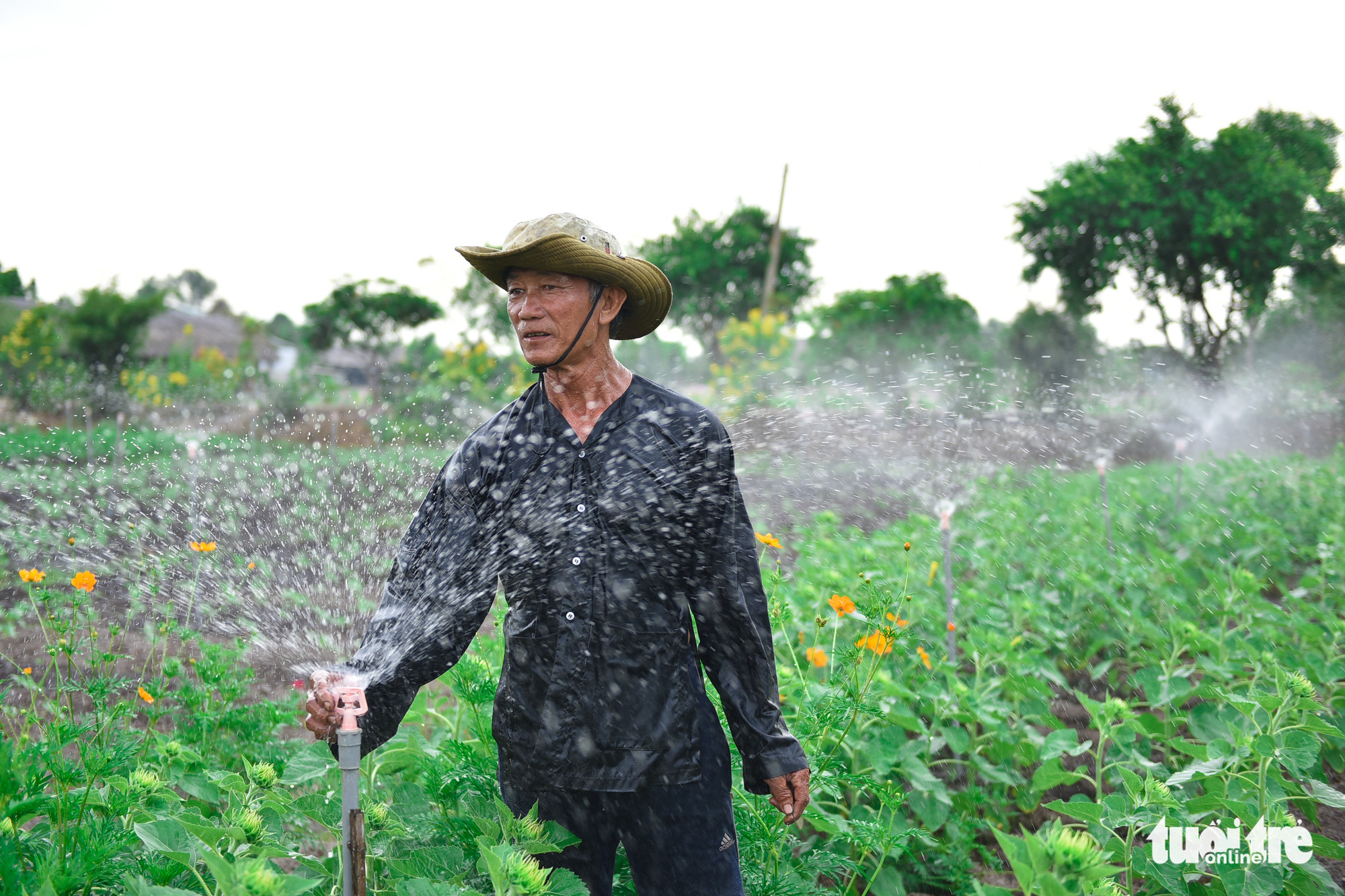 Ly Van Sang, 65, waters flowers at his garden in District 9, Ho Chi Minh City, Vietnam. Photo: Ngoc Phuong / Tuoi Tre