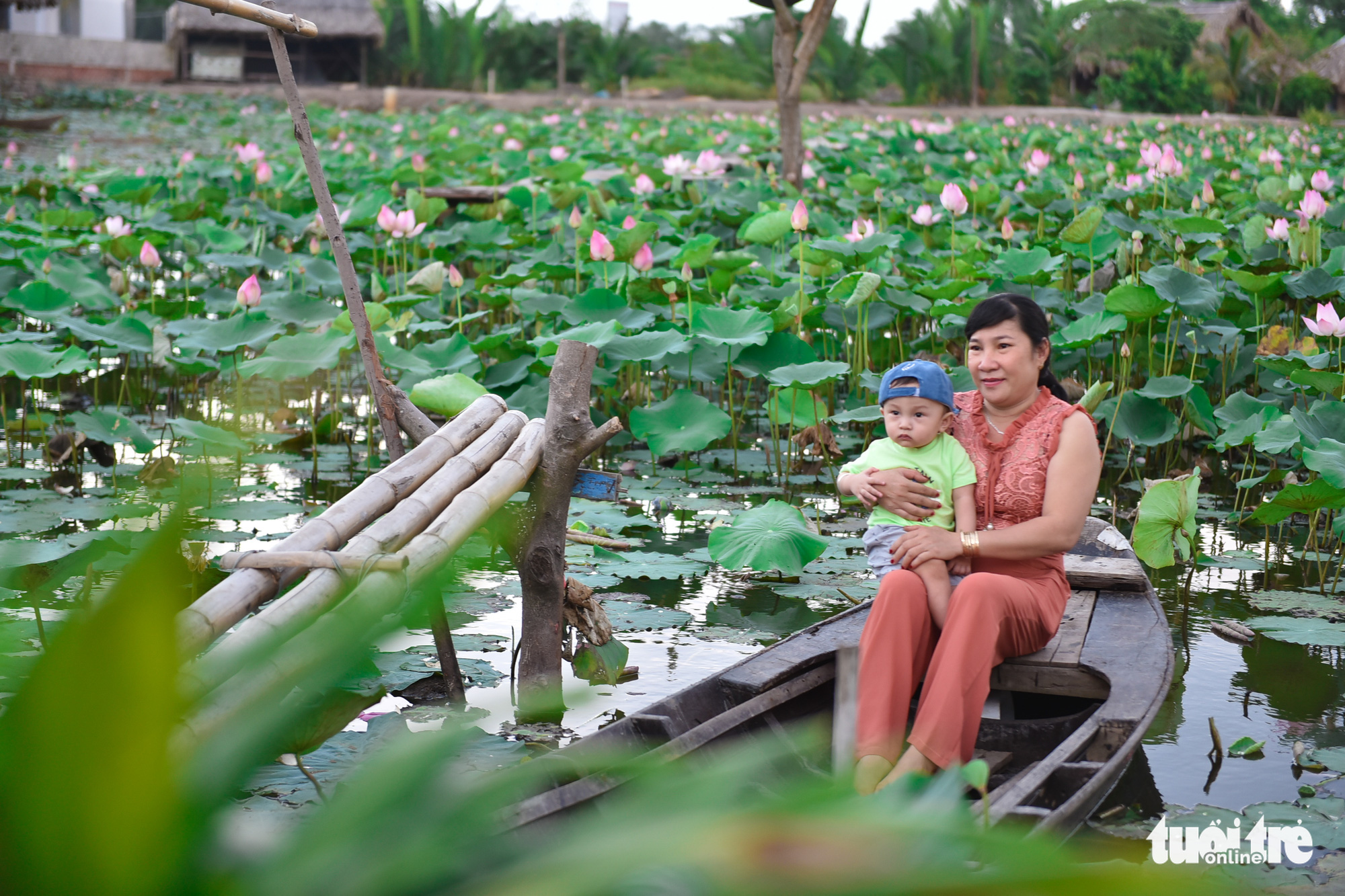 A woman and a child sit in a canoe on a lotus pond at a garden located in District 9, Ho Chi Minh City, Vietnam. Photo: Ngoc Phuong / Tuoi Tre