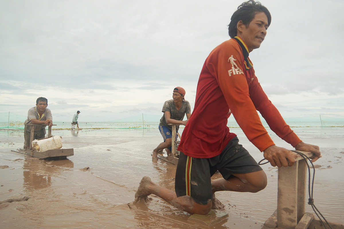 Vietnamese fishermen mud-skate for a tight living