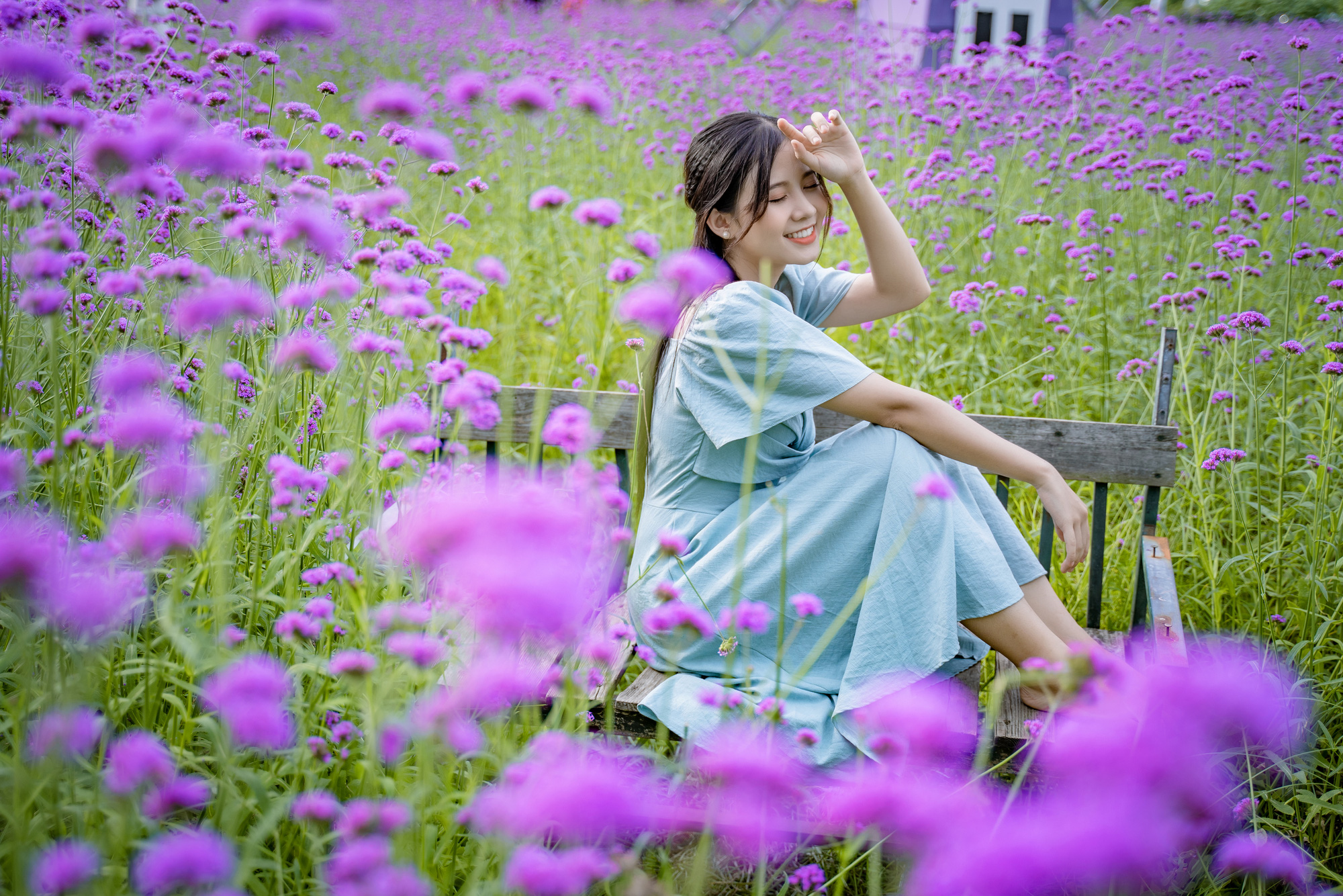 A young woman poses for photos at a purpletop farm at the Long Bien flower plateau in Hanoi, Vietnam. Photo: Pham Tuan / Tuoi Tre