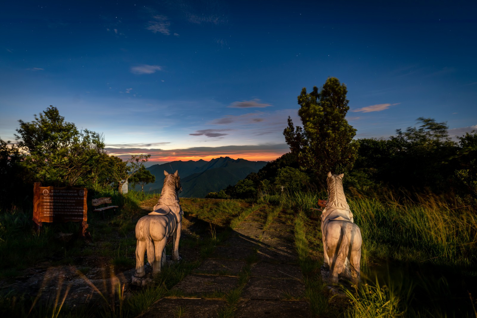Statues of two white horses are seen on top of Bach Ma mountain in Thua Thien-Hue Province, Vietnam. Photo: Tran Luu Anh Tuan / Tuoi Tre