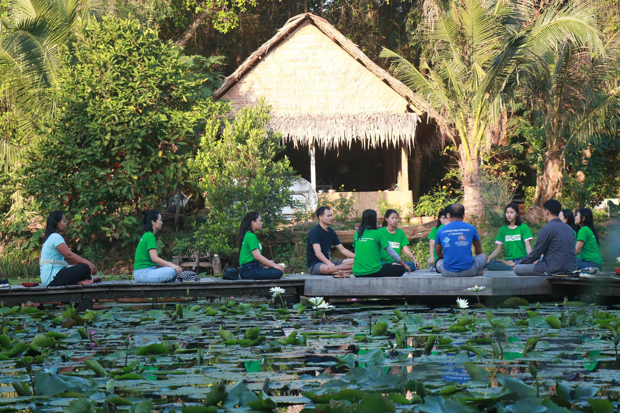 Dong Thap deserves title of Vietnam's magical 'land of the lotus'
