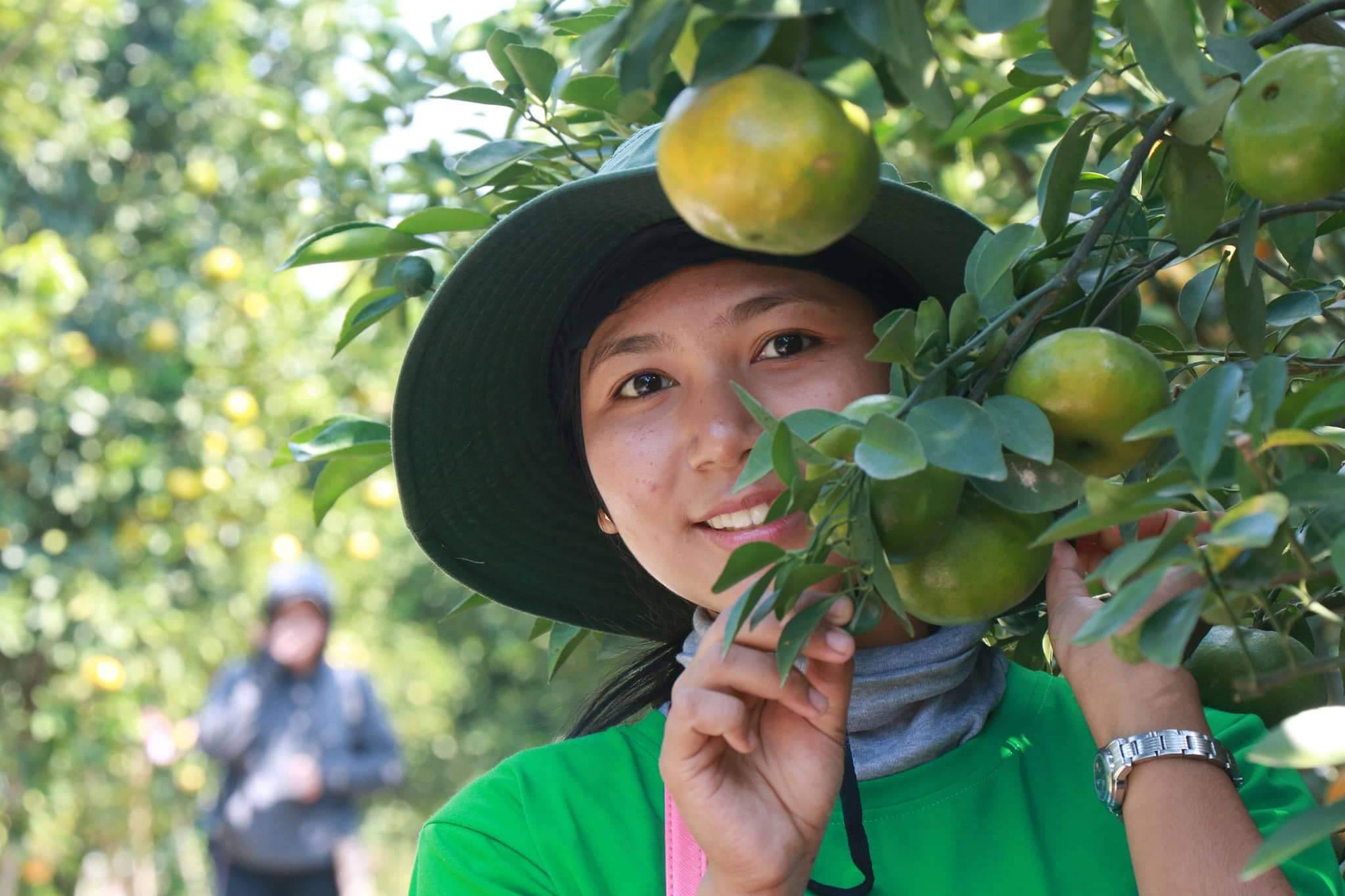 A tourist with a Dong Thap tangerine tree at a local tangerine garden in Dong Thap Province, Vietnam. Photo: Ly Quoc Dang / Tuoi Tre