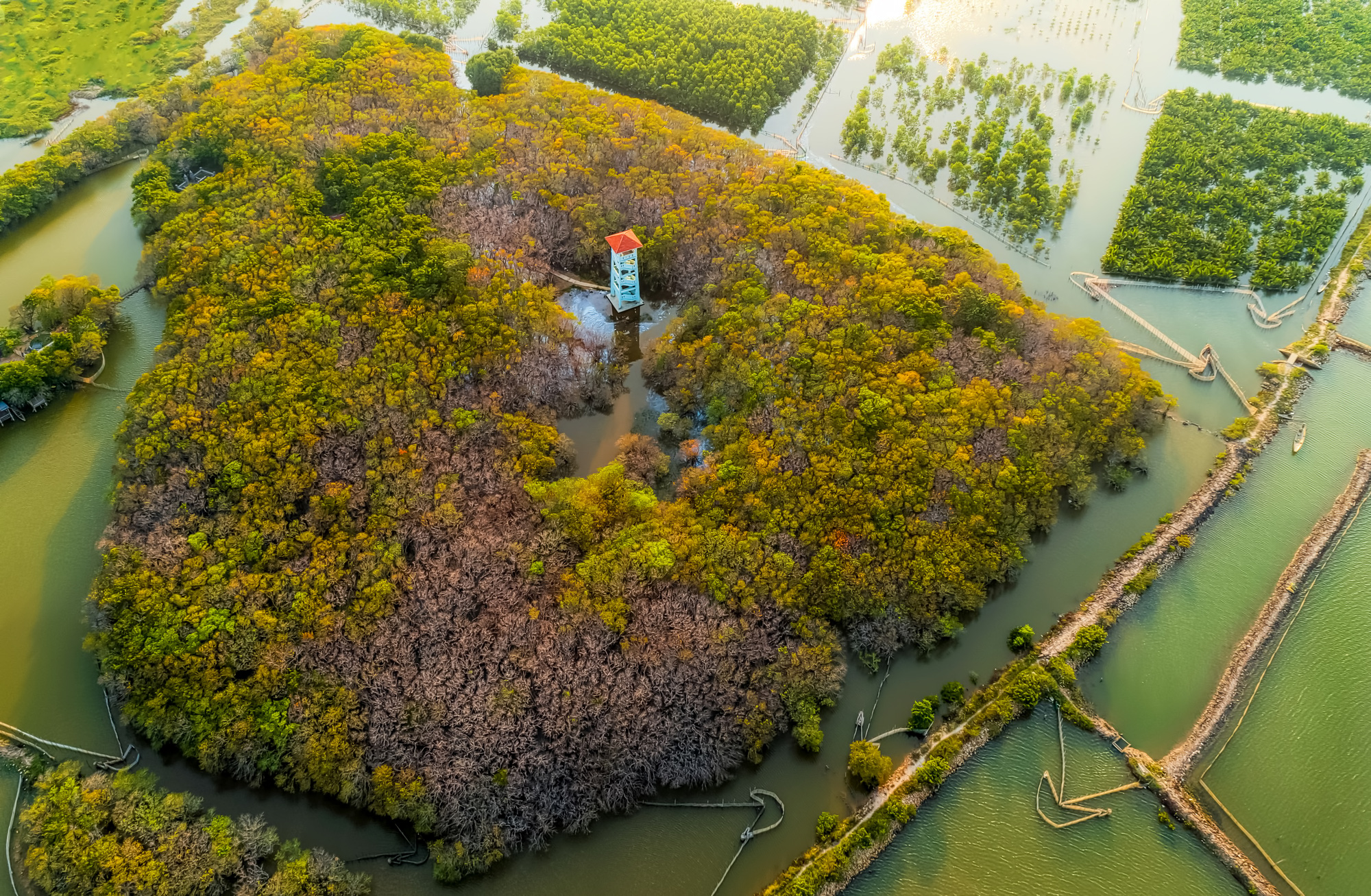 An aerial photo captures a part of Ru Cha mangrove forest ecosystem in Huong Tra District, Thua Thien-Hue Province, Vietnam. Photo: Kelvin Long / Tuoi Tre