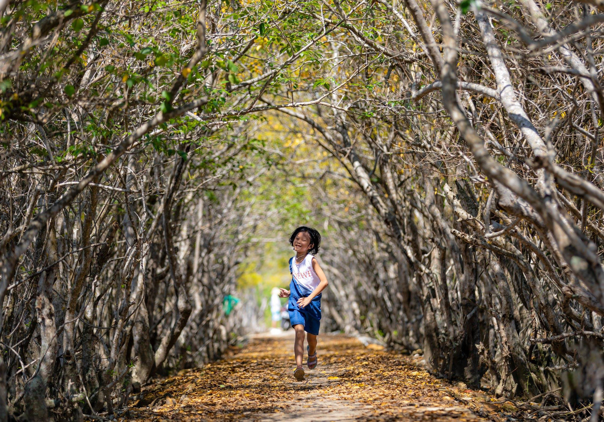 A kid runs on a concrete road leading to a mangrove forest in Huong Tra District, Thua Thien-Hue Province, Vietnam. Photo: Kelvin Long / Tuoi Tre