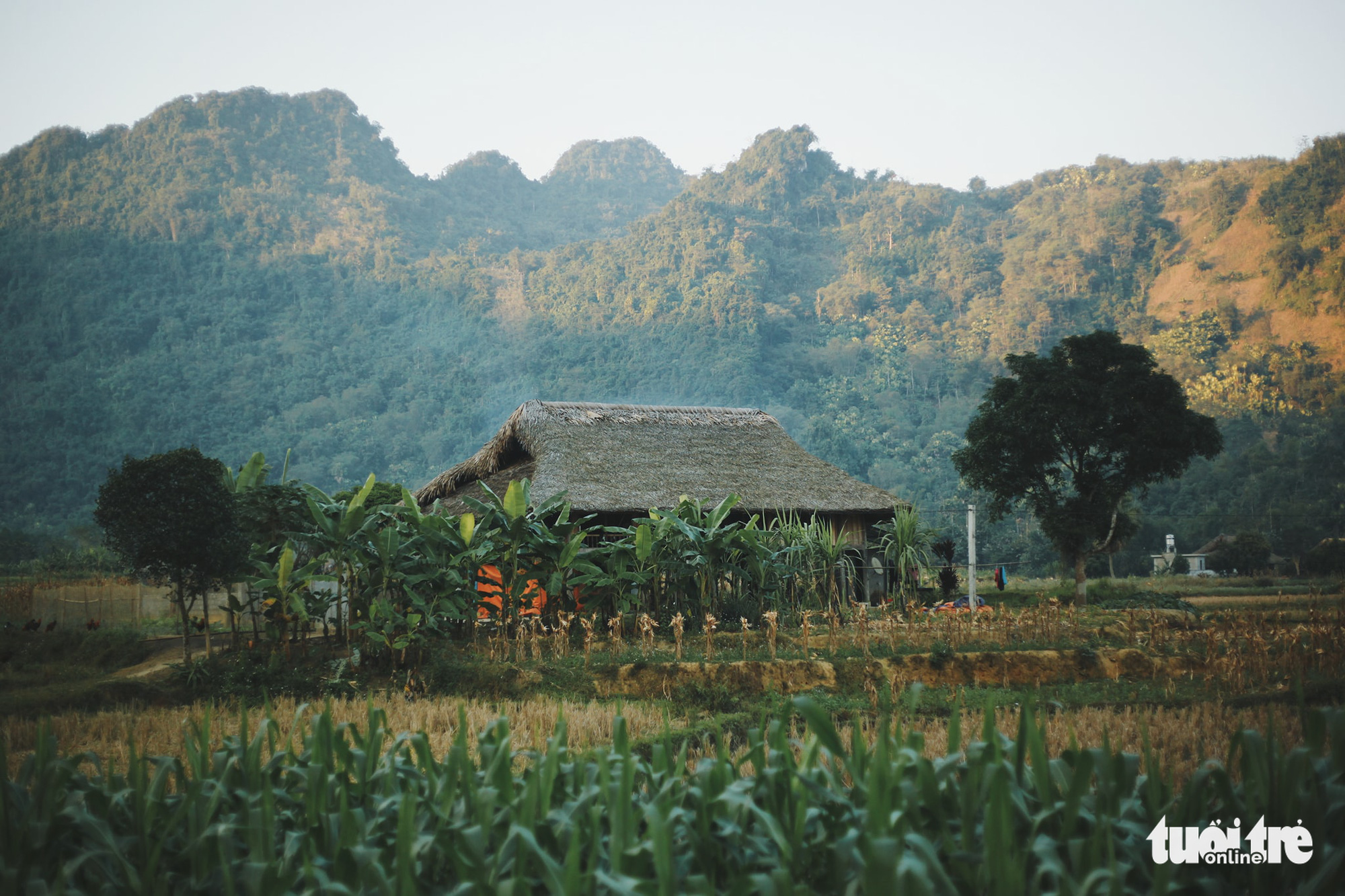 Experience a day as a Tay ethnic minority member in Vietnam
