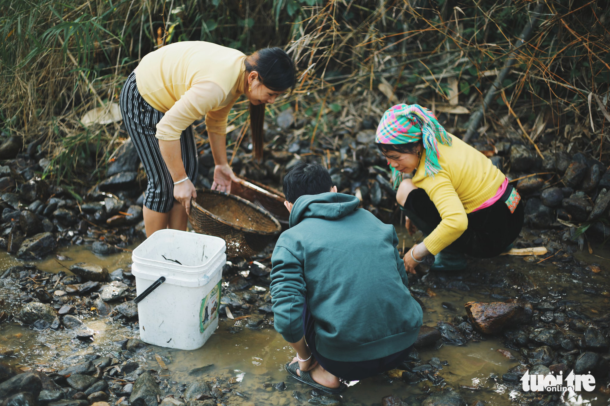 Local people fish in a stream in Tong Pang Village, Lam Thuong Commune, Luc Yen District, Yen Bai Province, Vietnam. Photo: Mai Thuong / Tuoi Tre