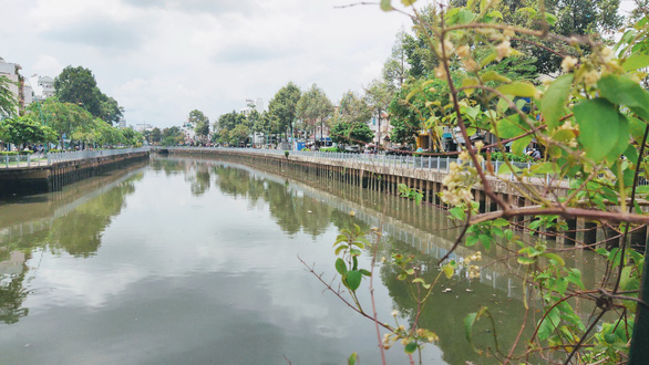 A section from Ut Tich Street to Le Van Sy Street along Nhieu Loc - Thi Nghe Canal looks greener after being dredged. Photo: Van Binh / Tuoi Tre