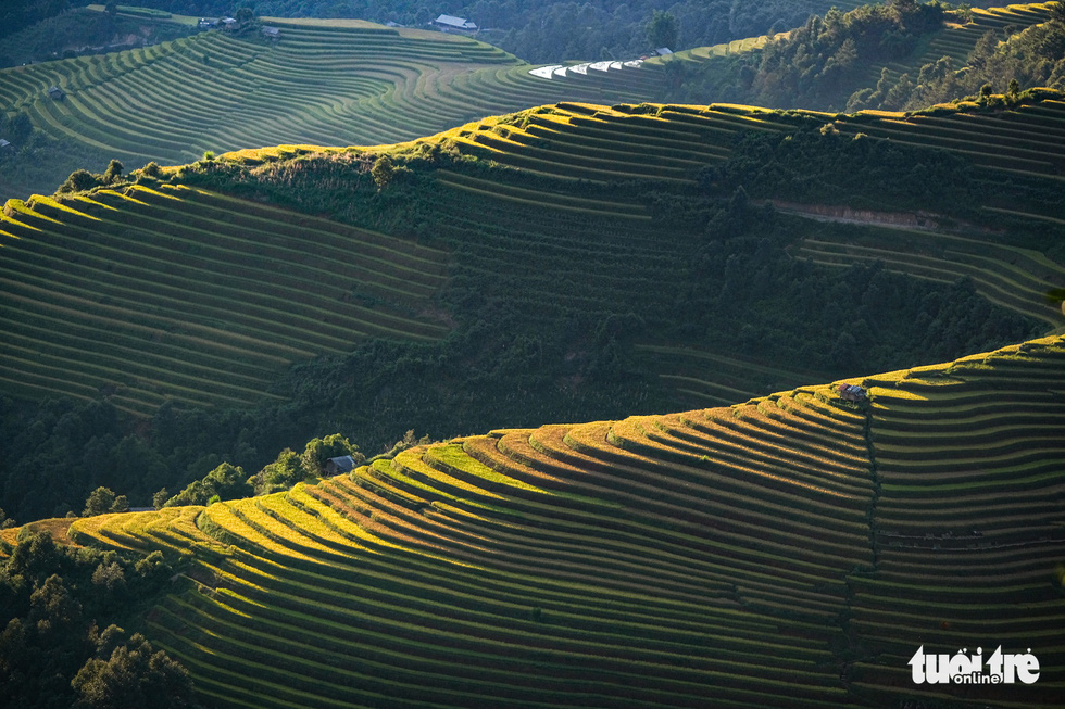 Mu Cang Chai shows its most beautiful charms in September and October during the paddy harvest season. Photo: Nam Tran / Tuoi Tre