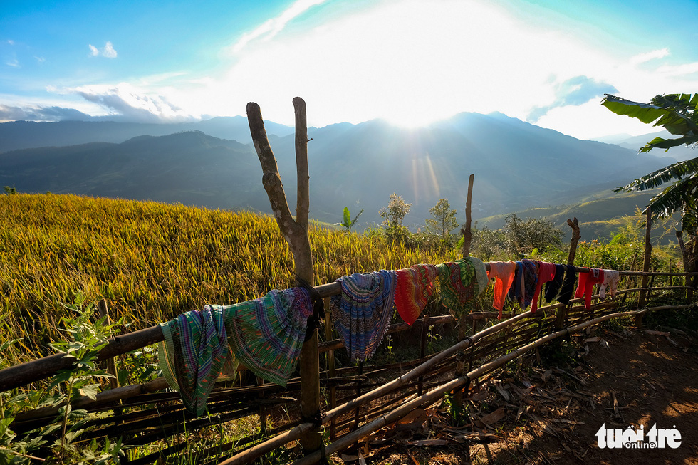 Colorful skirts of Hmong people, one of ethnic minority groups at Mu Cang Chai, are being hung next to a paddy field. Photo: Nam Tran / Tuoi Tre