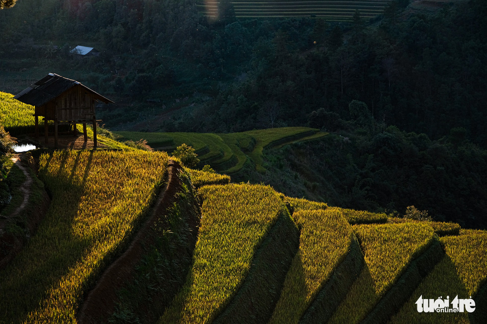 A hill casts shadows in the sunset in Mu Cang Chai District, Yen Bai Province, Vietnam. Photo: Nam Tran / Tuoi Tre