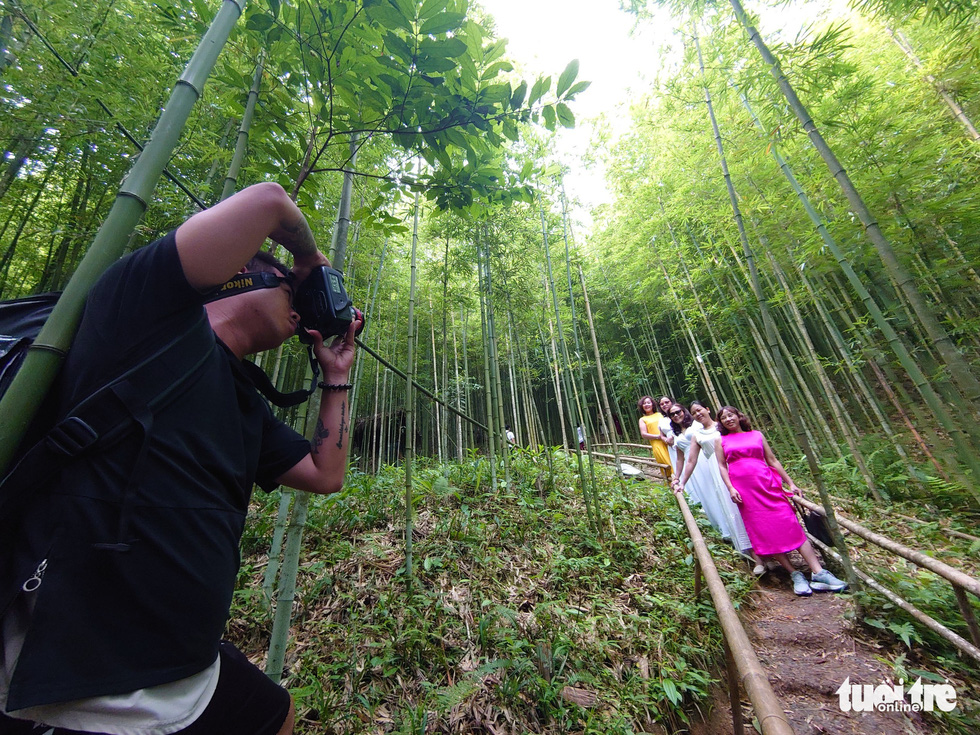 Female tourists pose for a photo in the bamboo forest. Photo: Nam Tran - Ha Thanh / Tuoi Tre