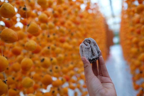 A piece of hoshigaki (sun-dried persimmon). Photo: Mai Vinh / Tuoi Tre
