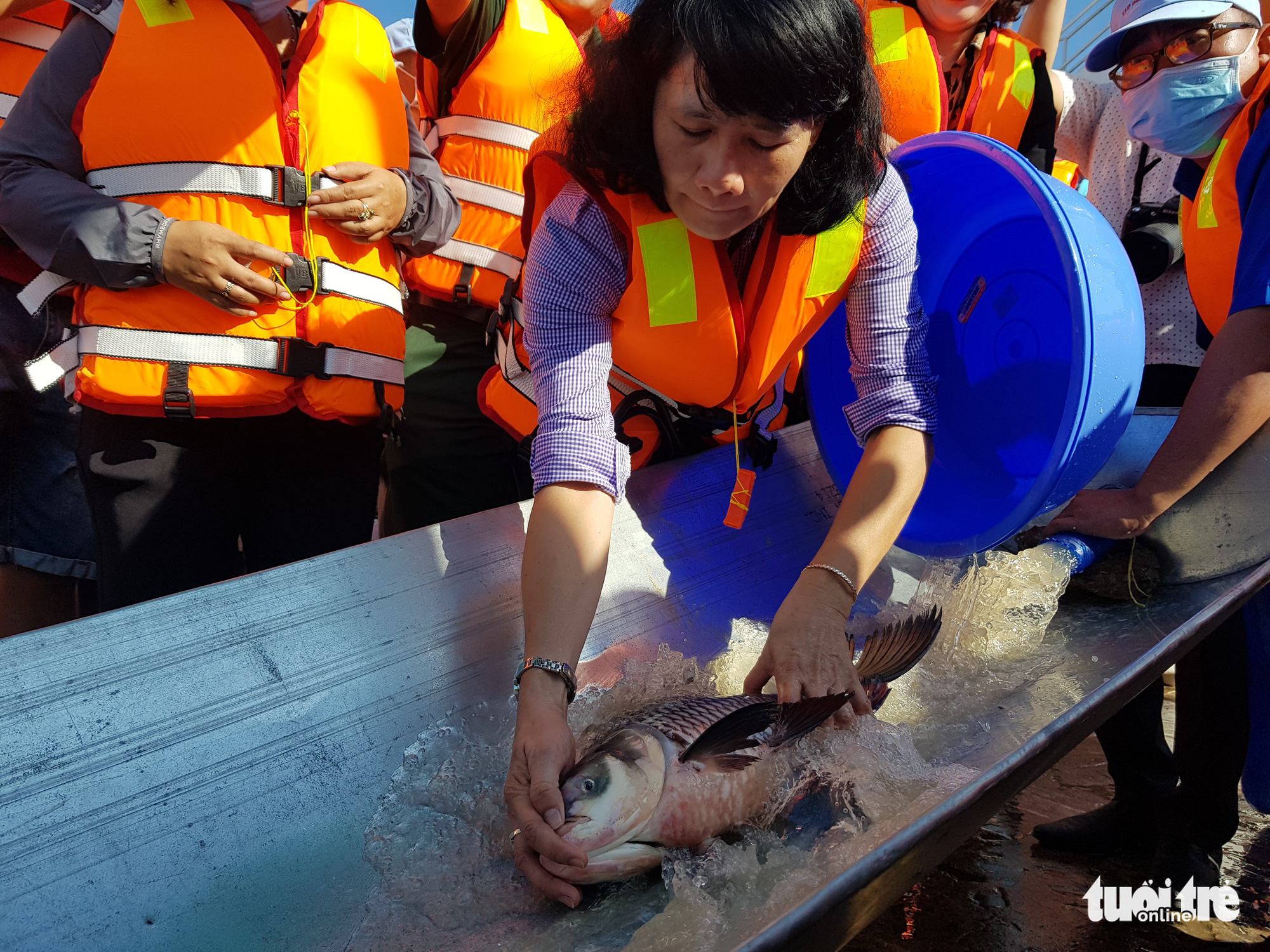 Vietnam province releases 18 tonnes of fish for aquatic resource regeneration