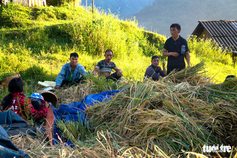 Farmers of Ha Nhi Den community in Y Ti Commune of Lao Cai Province rest in the middle of their harvest day