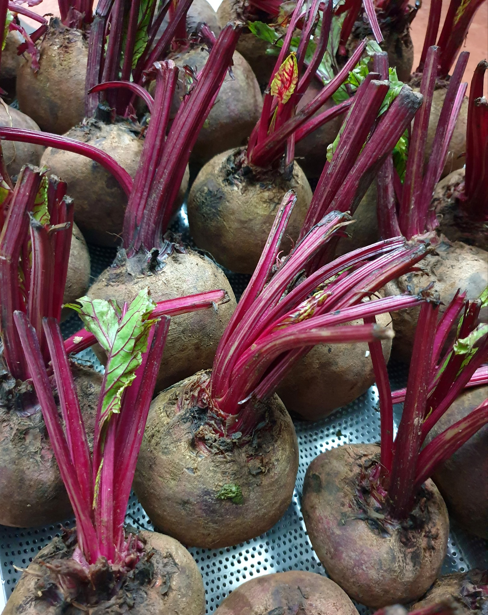 Beetroots are prepared to make red breads at the Cyburger by Homekekery in Hanoi. Photo: Supplied