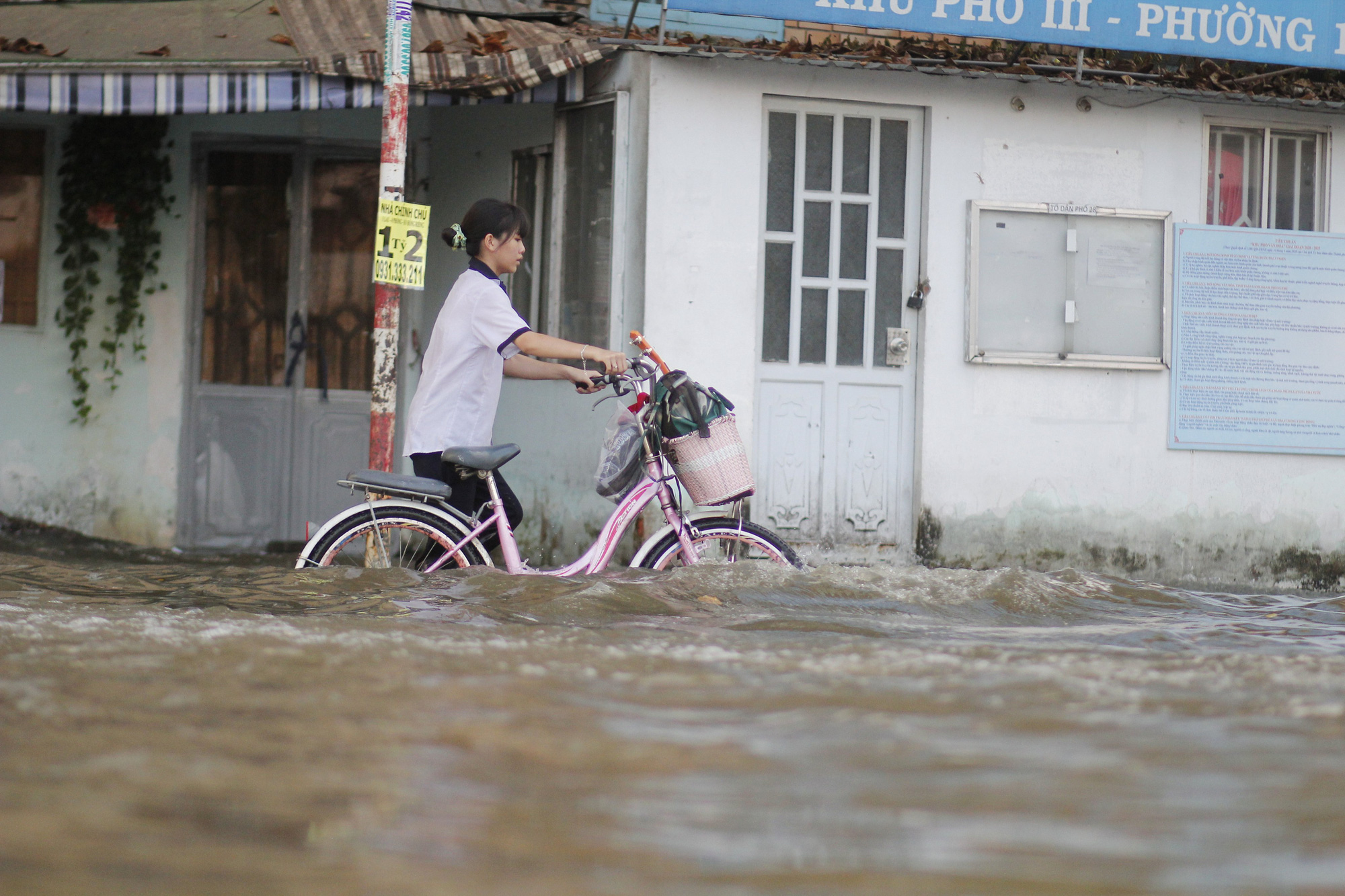 A student pushes her bicycle along a flooded street in Ho Chi Minh City, November 16, 2020. Photo: Kim Ut / Tuoi Tre