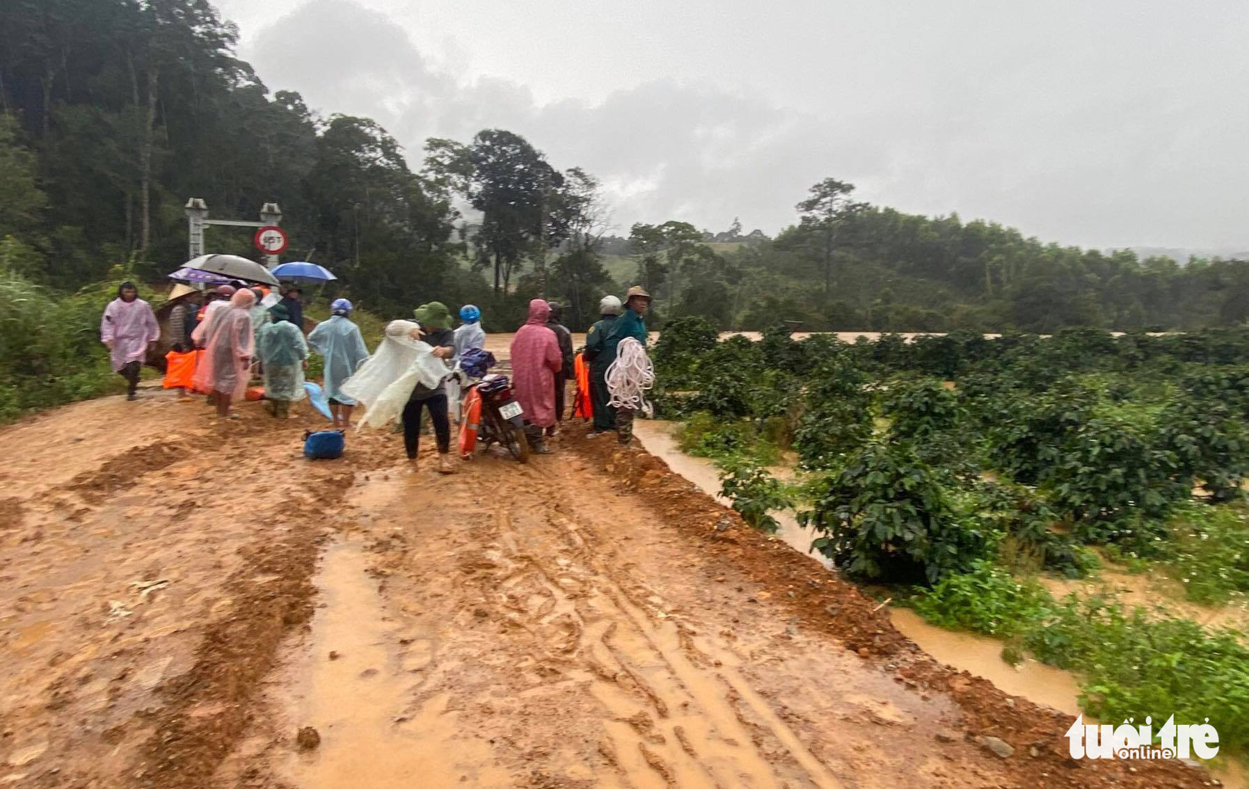 Tourists swept away by flood during trekking tour at Vietnam national park